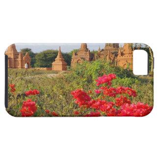 Asia, Myanmar (Burma), Bagan (Pagan). A Bagan iPhone SE/5/5s Case