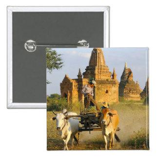 Asia, Myanmar (Burma), Bagan (Pagan). A cart is Button
