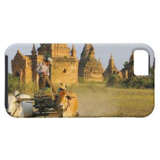 Asia, Myanmar (Burma), Bagan (Pagan). A cart is iPhone 5 Covers