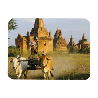 Asia, Myanmar (Burma), Bagan (Pagan). A cart is Rectangular Photo Magnet