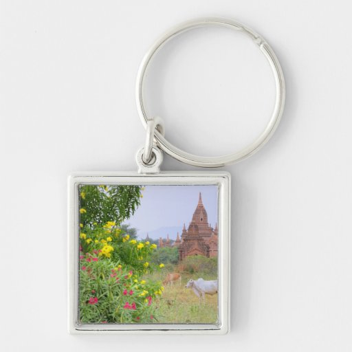 Asia, Myanmar (Burma), Bagan (Pagan). Cows Silver-Colored Square Keychain
