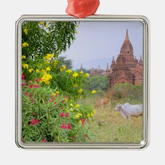 Asia, Myanmar (Burma), Bagan (Pagan). Cows Metal Ornament