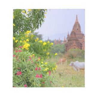 Asia, Myanmar (Burma), Bagan (Pagan). Cows Notepad