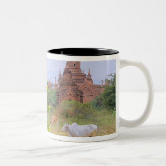 Asia, Myanmar (Burma), Bagan (Pagan). Cows Two-Tone Coffee Mug