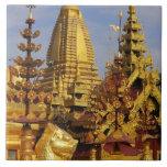Asia, Myanmar (Burma), Bagan (Pagan). The Shwe 3 Large Square Tile
