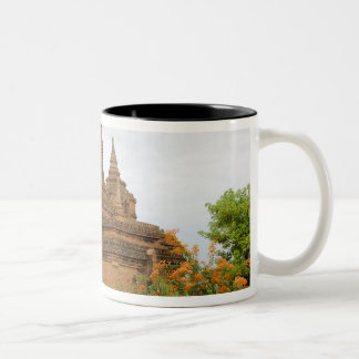 Asia, Myanmar Burma), Bagan Pagan). Various Two-Tone Coffee Mug