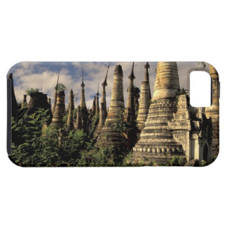 Asia, Myanmar, Inle Lake. Ancient ruins of iPhone SE/5/5s Case