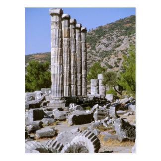 Asia, Oriente Medio, Turquía, Ephesus. Templo de Postal