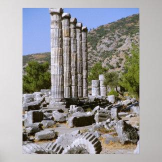 Asia, Oriente Medio, Turquía, Ephesus. Templo de Póster