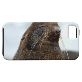 Asia, Russia, Russian Far East, Kamchatkan iPhone SE/5/5s Case