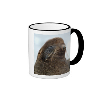 Asia, Russia, Russian Far East, Kamchatkan Ringer Coffee Mug
