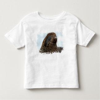Asia, Russia, Russian Far East, Kamchatkan Shirt