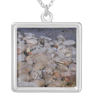 Asia, Russia, Siberian Arctic, Bering Sea, Silver Plated Necklace