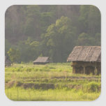 Asia, Tailandia, Mae Hong Son, chozas del arroz en Pegatina Cuadrada