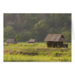 Asia, Tailandia, Mae Hong Son, chozas del arroz en Tarjeta De Felicitación