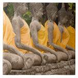 Asia, Tailandia, Tailandia, Buddhas en Ayutthaya Azulejo Cuadrado Grande