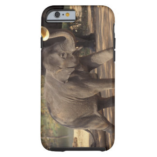 Asia, Thailand, Lampang Bowing with hat - Thai iPhone 6 Case