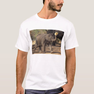Asia, Thailand, Lampang Bowing with hat - Thai T-Shirt