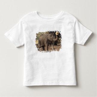 Asia, Thailand, Lampang Bowing with hat - Thai Toddler T-shirt