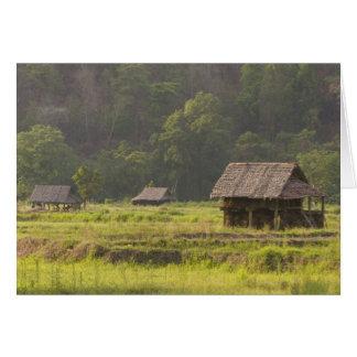 Asia, Thailand, Mae Hong Son, Rice huts in the Card