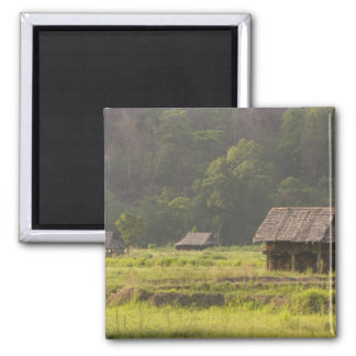 Asia, Thailand, Mae Hong Son, Rice huts in the 2 Inch Square Magnet