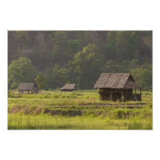 Asia, Thailand, Mae Hong Son, Rice huts in the Poster