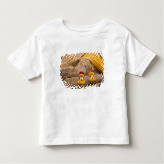 Asia, Thailand, Siam, Buddha at Ayutthaya 2 Shirts
