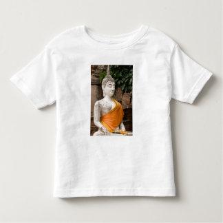 Asia, Thailand, Siam, Buddha at Ayutthaya Tee Shirts