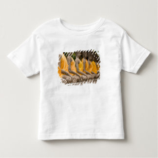 Asia, Thailand, Siam, Buddhas at Ayutthaya T-shirts