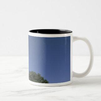 Asia, Yemen, Wadi Dhar. Rock Palace, or Dar Al Two-Tone Coffee Mug