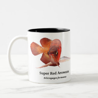 Asian Arowana Two-Tone Coffee Mug
