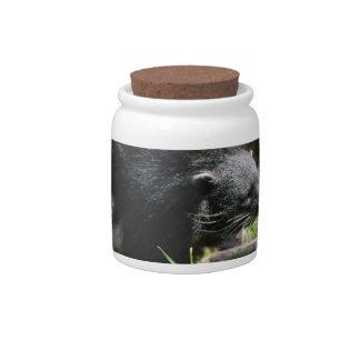 Asian Bearcat Candy Jar
