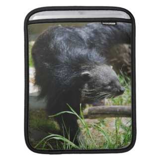 Asian Bearcat iPad Sleeve