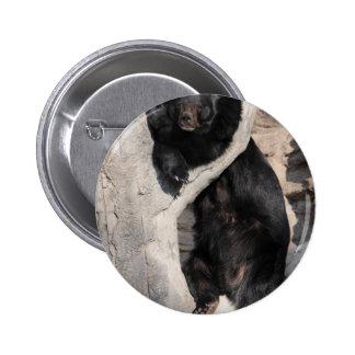 Asian Black Bear Button