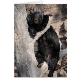 Asian Black Bear Card