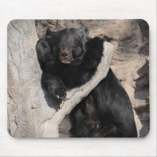 Asian Black Bear Mouse Pad