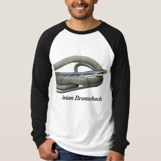 Asian Bronzeback Basic Long Sleeve Raglan T-Shirt