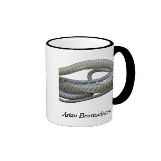 Asian Bronzeback Ringer Mug