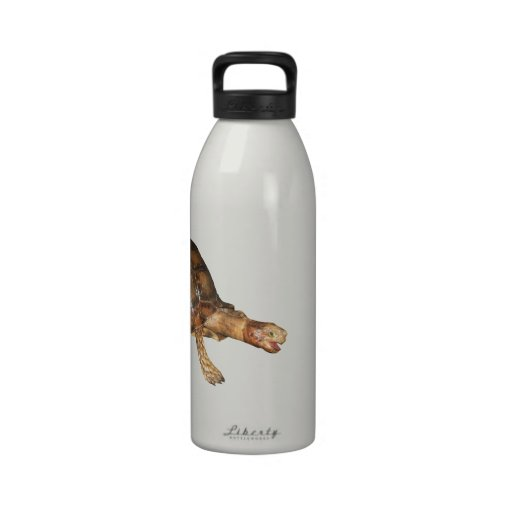 Asian Brown and Black Mountain Tortoise Water Bottle