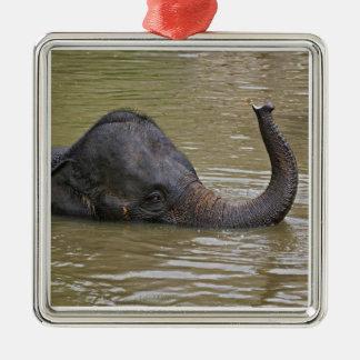 Asian Elephant bathing, Thai Elephant Metal Ornament