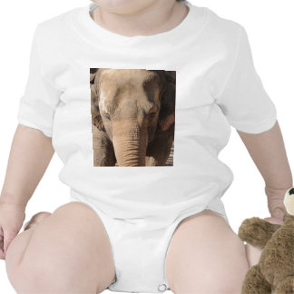 Asian Elephant Bodysuit