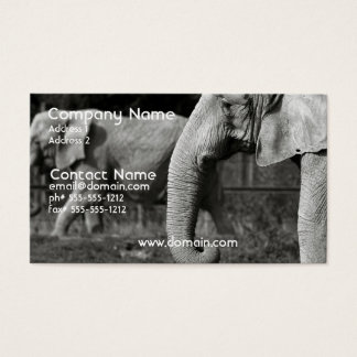 Asian Elephant Business Card