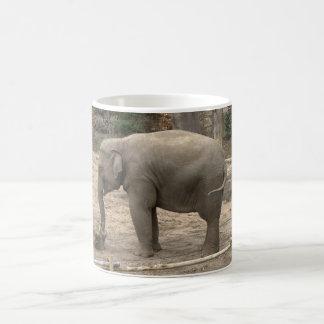 Asian elephant coffee mug