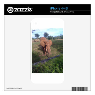 Asian Elephant Decal For The iPhone 4S