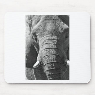 Asian Elephant in Black and White Mouse Pad
