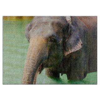 Asian Elephant In Green Water, Animal Photo Cutting Board