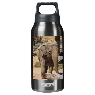 Asian Elephant Insulated Water Bottle