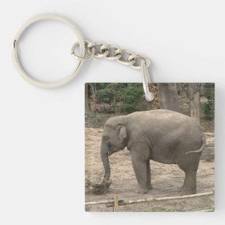 Asian elephant keychain