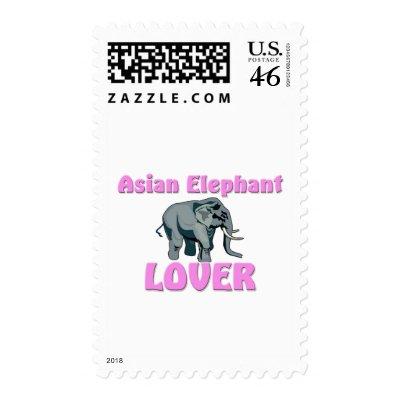 elephant clothing