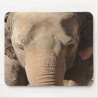 Asian Elephant Mouse Mat